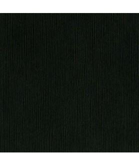 Papier Bazzill Blackbird
