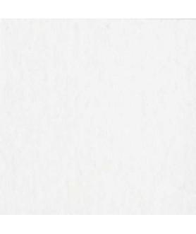 Papier Bazzill White OP